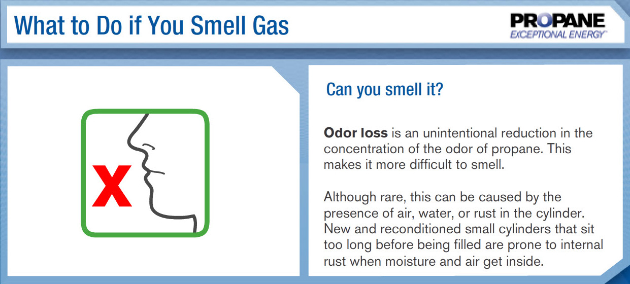 Smell.It5_